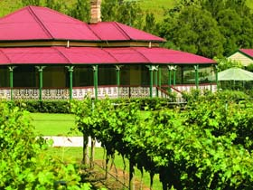 OReillys Canungra Valley Vineyards - Accommodation Mount Tamborine