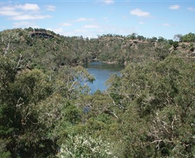 Mount Eccles National Park - Accommodation Mount Tamborine