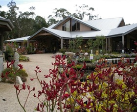 Kuranga Native Nursery and Paperbark Cafe - Accommodation Mount Tamborine