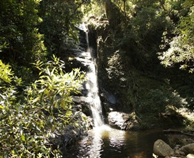 Macquarie Pass National Park - Accommodation Mount Tamborine