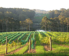 Tilba Valley Wines - Accommodation Mount Tamborine