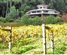 Peveril Vineyard/Beechy Berries - Accommodation Mount Tamborine