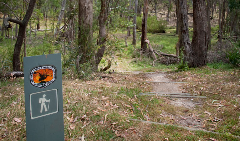Moolarben picnic area - Accommodation Mount Tamborine