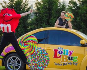 The Lolly Bug - Accommodation Mount Tamborine