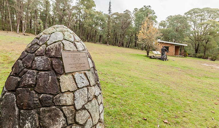 Major Clews Hut walking track - Accommodation Mount Tamborine