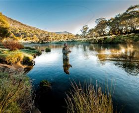 Fly Fishing Tumut - Accommodation Mount Tamborine