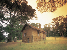 Heysen - The Cedars - Accommodation Mount Tamborine