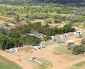 Blackall Saleyards - Accommodation Mount Tamborine