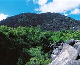 Black Mountain Kalkajaka National Park - Accommodation Mount Tamborine