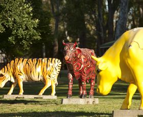 Greater Shepparton's Moooving Art - Accommodation Mount Tamborine