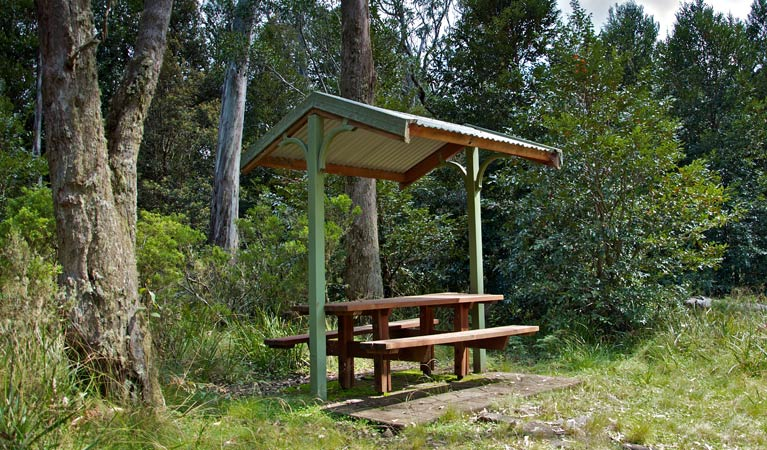 Devils Hole lookout walk and picnic area - Accommodation Mount Tamborine