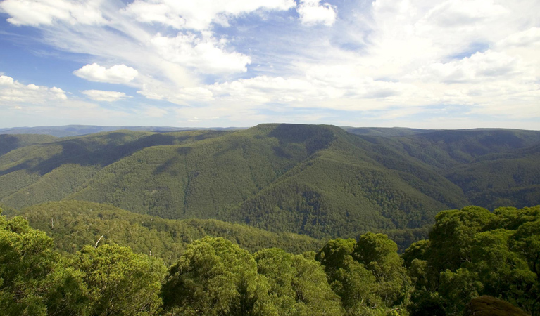 Barrington Tops National Park - Accommodation Mount Tamborine