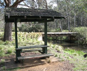 Barrington Tops State Forest - Accommodation Mount Tamborine