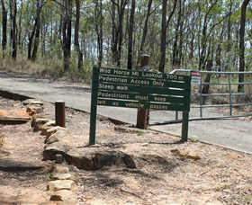 Wild Horse Mountain Lookout - Accommodation Mount Tamborine