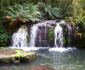 Barrington Tops National Park Walks - Accommodation Mount Tamborine