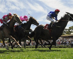 Moruya Racecourse - Accommodation Mount Tamborine