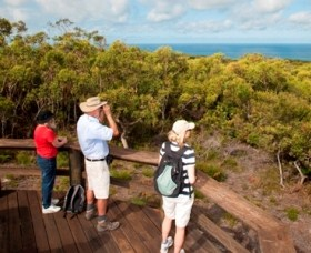 Naree Budjong Djara National Park - Accommodation Mount Tamborine