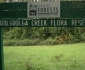 Woolgoolga Creek Flora Reserve - Accommodation Mount Tamborine