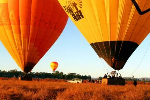 Hot Air Balloon Scenic Rim - Accommodation Mount Tamborine