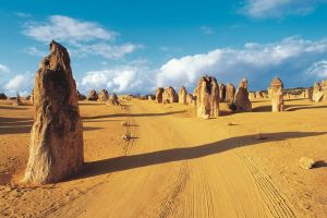 Pinnacles Desert Koalas and Sandboarding 4WD Day Tour from Perth - Accommodation Mount Tamborine