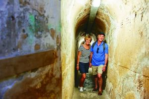 Rottnest Island Full-Day Trip With Guided Island Tour From Perth - Accommodation Mount Tamborine