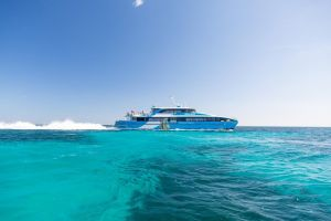 Fremantle to Rottnest Island Roundtrip Ferry Ticket - Accommodation Mount Tamborine