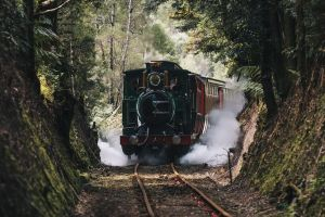 West Coast Wilderness Railway River and Rainforest from Strahan - Accommodation Mount Tamborine
