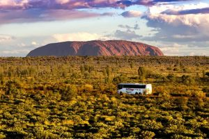 Coach Transfer from Kings Canyon Resort to Ayers Rock Resort - Accommodation Mount Tamborine