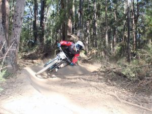 Jolly Nose Mountain Bike Park - Accommodation Mount Tamborine