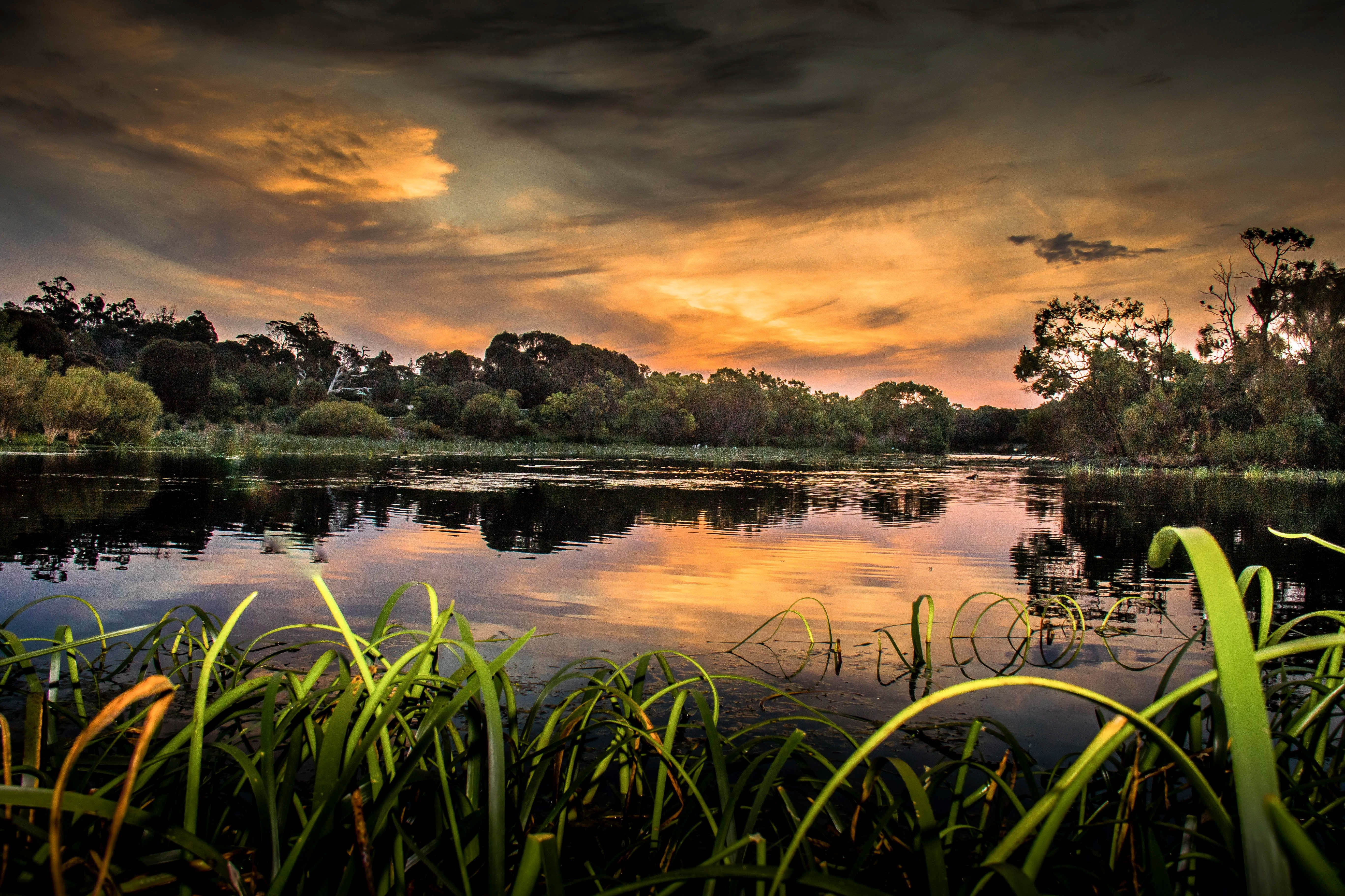 Lake McIntyre - Accommodation Mount Tamborine
