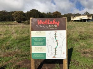 The Wallaby Track - Accommodation Mount Tamborine