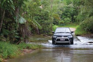 The Pioneer Valley and Eungella National Park - Accommodation Mount Tamborine