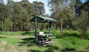 Alexanders picnic area - Accommodation Mount Tamborine