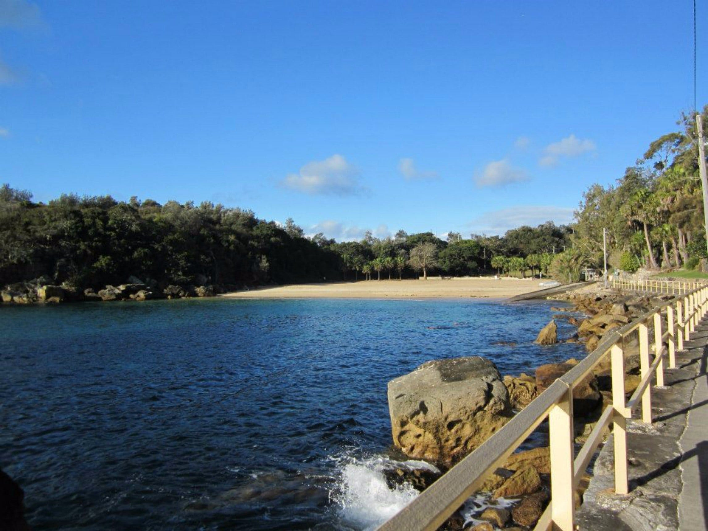 Shelly Beach Manly - Accommodation Mount Tamborine