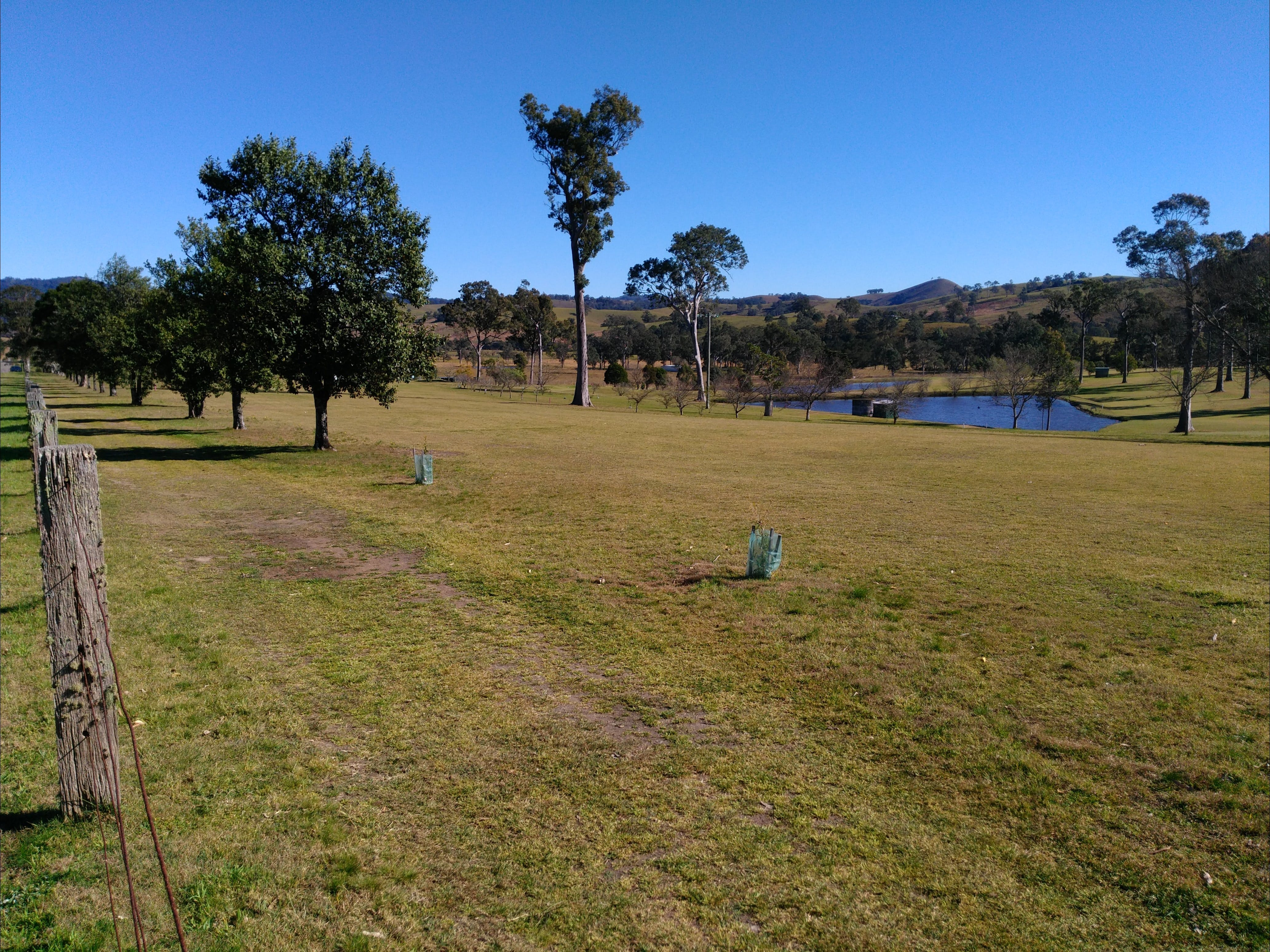 Dungog and District Golf Club - Accommodation Mount Tamborine