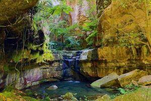 Glimpse of the Outback 5 Day Tour - Roma and Surrounds - Accommodation Mount Tamborine