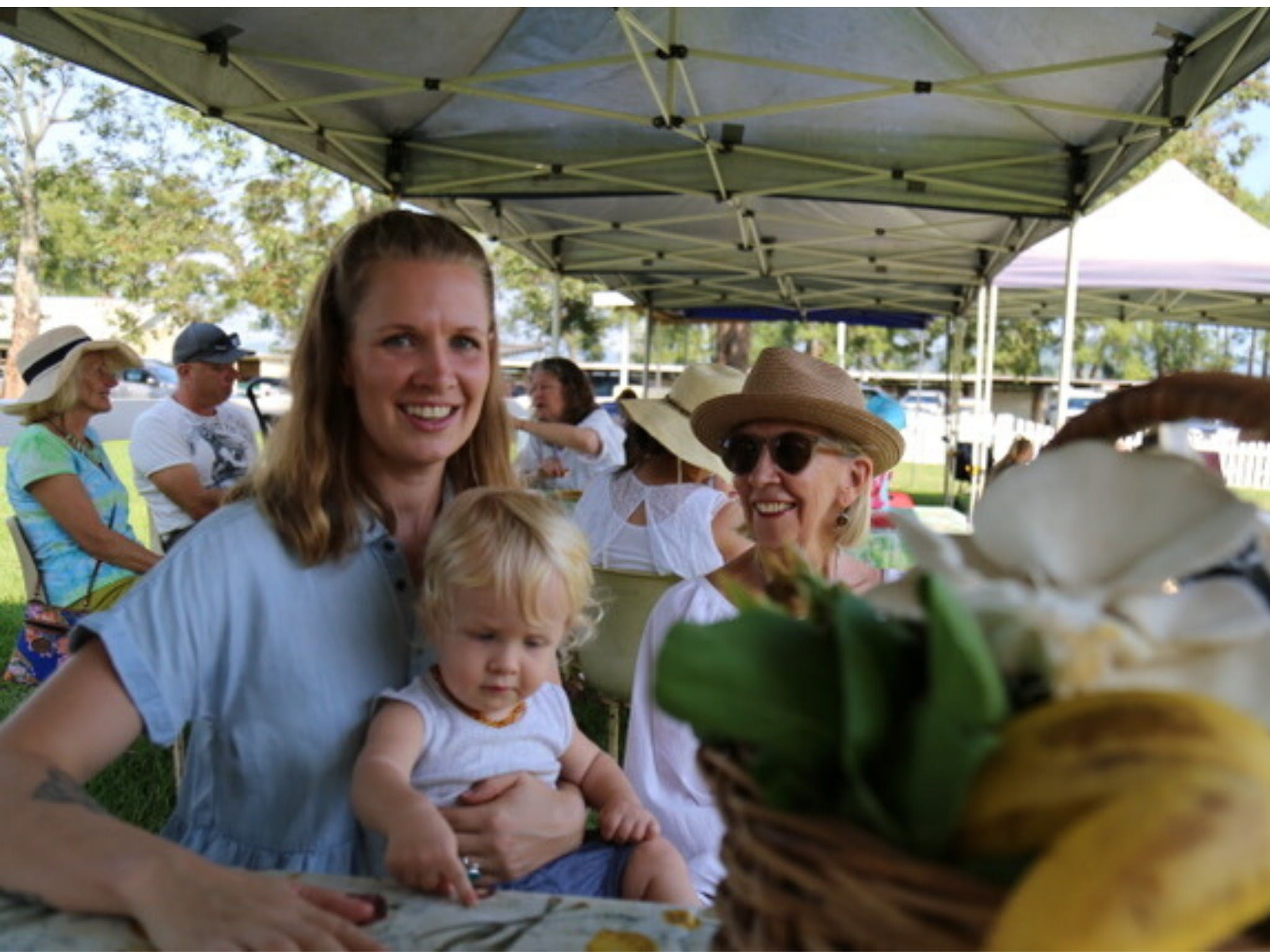 Murwillumbah Farmers' Market - Accommodation Mount Tamborine