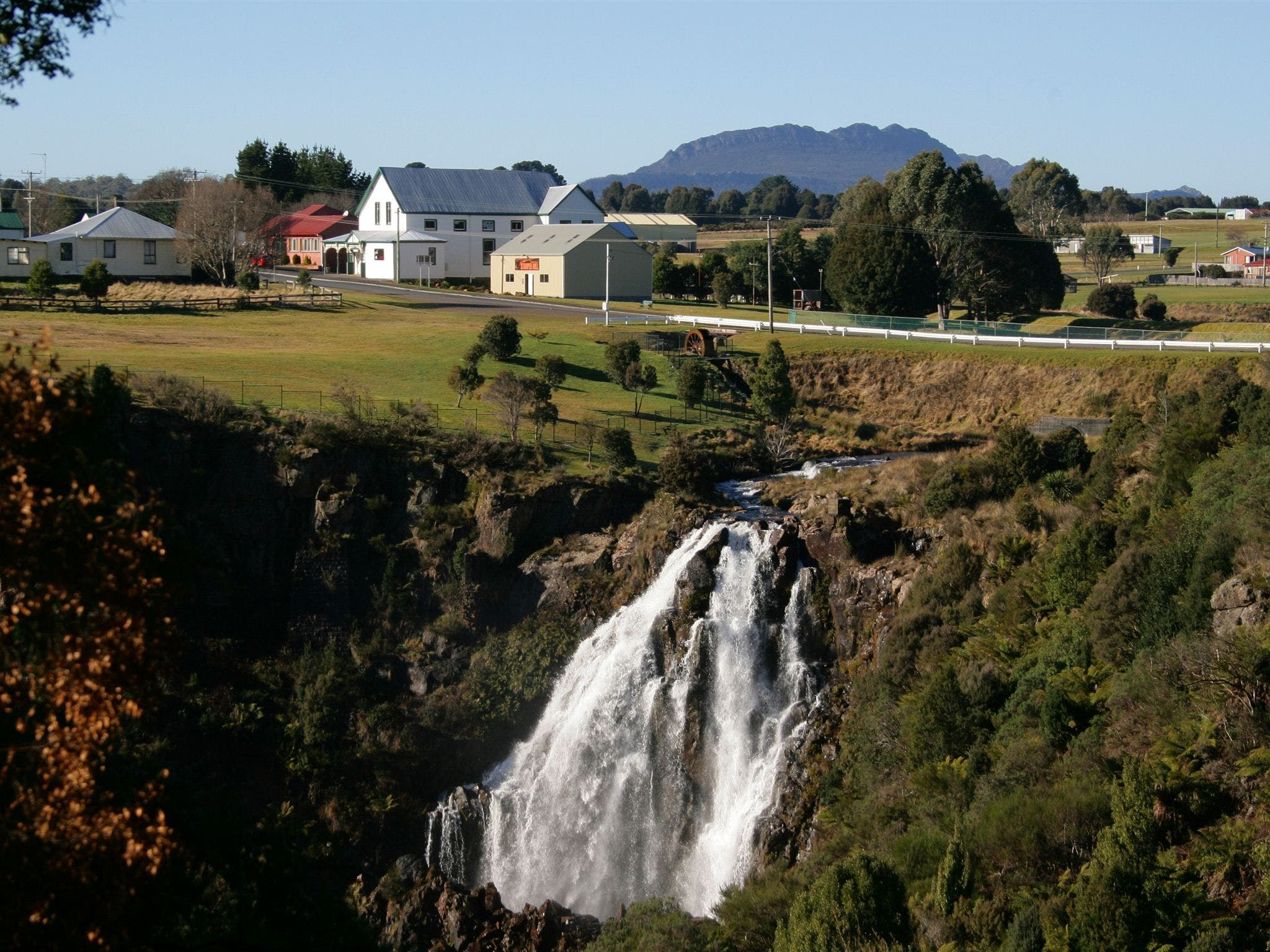 Waratah Falls - Accommodation Mount Tamborine