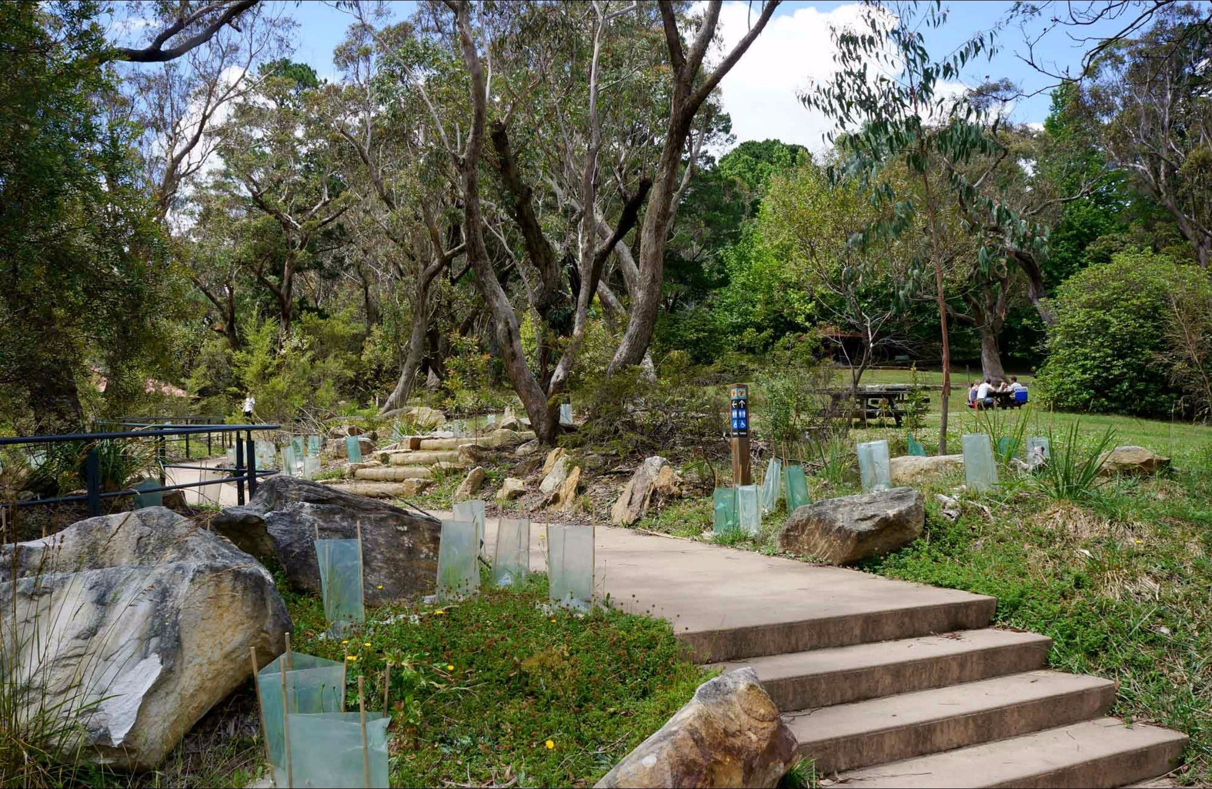 Wentworth Falls picnic area - Accommodation Mount Tamborine