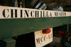 Chinchilla Historical Museum - Accommodation Mount Tamborine