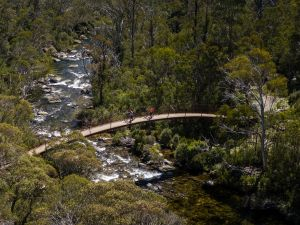 Thredbo Valley Track - Accommodation Mount Tamborine