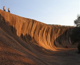 Wave Rock - Accommodation Mount Tamborine