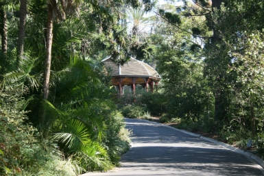 Royal Botanic Gardens Victoria - Accommodation Mount Tamborine