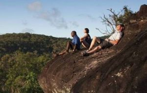 Cooktown Aboriginal Art Tours - Accommodation Mount Tamborine