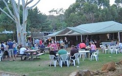 Bush Shack Brewery - Accommodation Mount Tamborine
