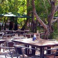 Lizard's Outdoor Bar and Grill