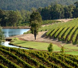 Brookhampton Estate Vineyard - Accommodation Mount Tamborine