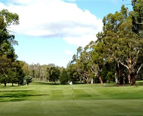 Cooma Golf Club - Accommodation Mount Tamborine