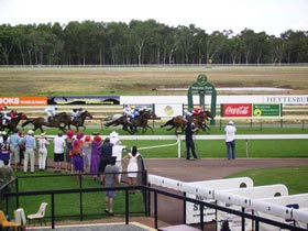 Pinjarra Race Club - Accommodation Mount Tamborine