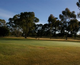 Winchelsea Golf Club - Accommodation Mount Tamborine